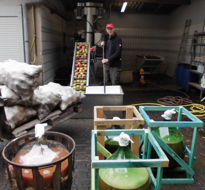 Bauer Burkard prüft die Qualität Ihrer Äpfel